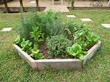 garden archive landscaping enchanting small herb garden design plans