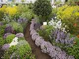 downloadfinding unique small herb garden design flower