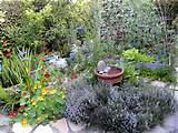 cool very attractive design herb garden with yellow red purple flowers