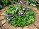 gallery of herb garden design ideas