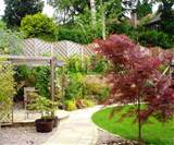 garden design ideas photos - garden designs herb garden design uk ...