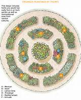 herb garden design 3 pictures photos images