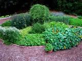 Herb Garden Design B
