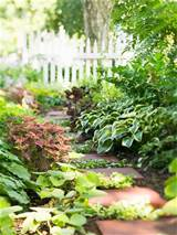 garden design for a shade garden