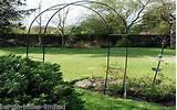 GARDEN ROSE ARCH CLIMBING PLANTS METAL TRELLIS 2.4m TALL | eBay £7.95