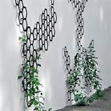 decorating your garden with metal garden trellis metal plant trellis