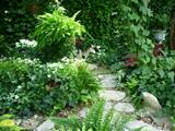 Stone path into the shade garden