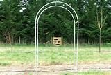 Archway Gate Paddock