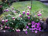 flowering shade garden ideas
