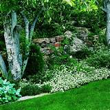 ... on flower shade gardening a shaded area can become a valued garden