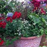 Shade flower pot