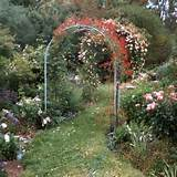 House Garden Arches - Latest metal garden arch