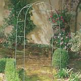metal-garden-arch_.jpg