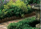 antique brick garden edging