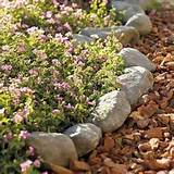 how to install garden stone edging for great home curb appeal