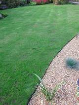the strimmer resistant as a lawn edging garden edging does not have to