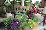 stained wicker basic on allows patio desire comment herbs it