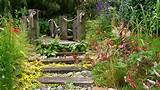 Garden Designer - Specialist in water gardens and construction of ...