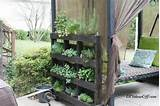 vertical-pallet-herb-garden-2.png