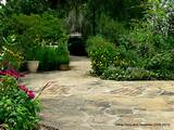 yard landscape 6 ideal leu gardens pictures garden edging ideas