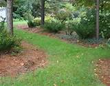 landscape edging ideas fabulous creation of landscape edging ideas