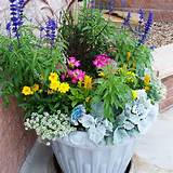 patio garden containers