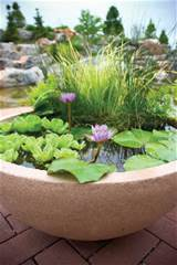 Selecting the Perfect Pond Pot