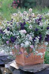 pastel patio container garden this beautiful container garden says ...