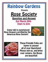 Rose Society Q&A @ Rainbow Gardens both locations | Thousand Oaks ...