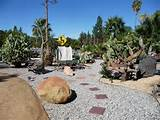 western gardens landscaping 98282 gardening nursery nurseries all