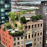 Green rooftop garden and patio ideas.