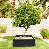... on this fantastic DIY product! Click here to see customer gardens