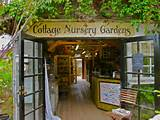 Cottage Nursery Gardens