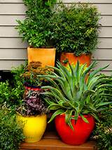 plantscaping patio ideas9