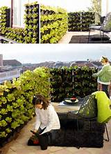 vertical home gardens modular stacking green wall system