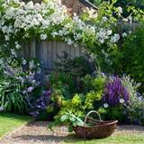 traditional garden plants | Traditional gardens | Garden design ideas ...