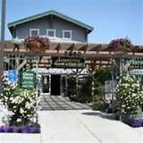Armstrong Garden Center - Costa Mesa