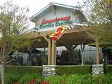 armstrong garden is not your typical big box nursery their prices are