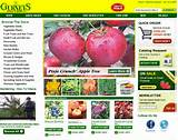 Seed Suppliers with Free Seed Catalogs