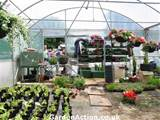 Chestnut Nurseries, garden centres in Coventry