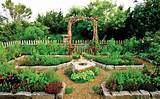Backyard Garden Ideas Vegetables