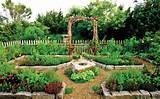 backyard garden ideas vegetables