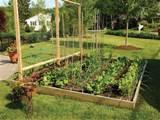 digital imagery above is segment of backyard vegetable garden ideas