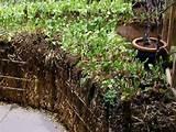 le straw bale gardening culture sur bottes de paille