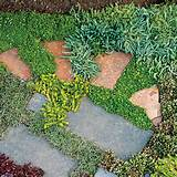 ... ) meets soft (plantings) in your yard? Modern art you can walk on