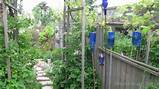 garden art ideas blue bottles as delphiniums empress of dirt 600x337