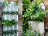 DIY Garden Ideas - Vertical Herb Garden