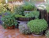 DIY Garden Art Ideas - Bing Images
