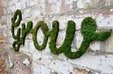 DIY Garden Ideas - Living Green Moss Graffiti