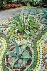 Succulent bed; Van Dusen Botanic Garden, Vancouver